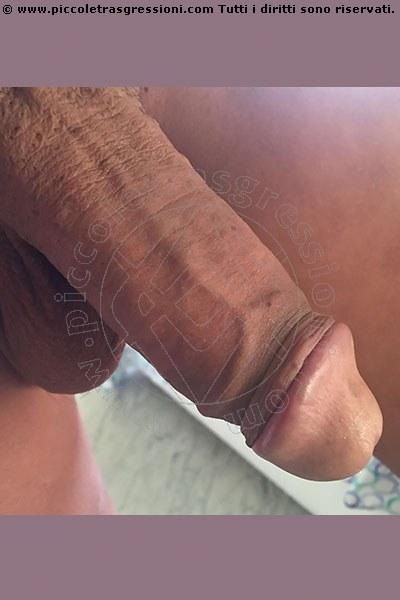 Trans Camilla. S selfie hot Trans 16